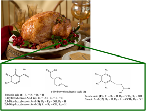 Thanksgiving chemistry- cranberries and yourblood