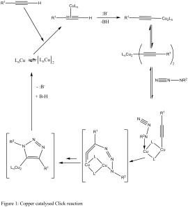 Reaction mechanism for the copper catalyzed azide alkyne click