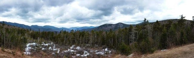 "New Hampshire forest in the ""spring"""